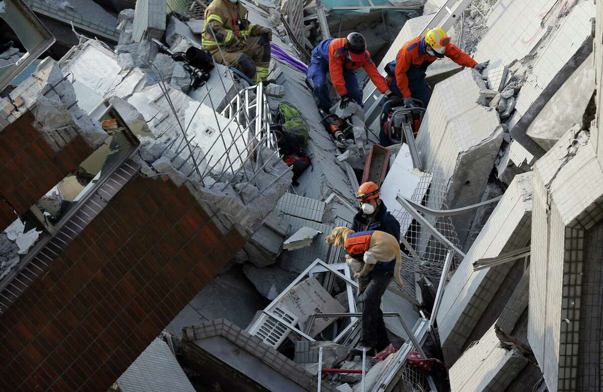 A canine rescue team searches for the missing in a collapsed building, after an early morning earthquake in Tainan, Taiwan, Saturday, Feb. 6, 2016. A powerful, shallow earthquake struck southern Taiwan before dawn Saturday. (AP Photo/Wally Santana)
