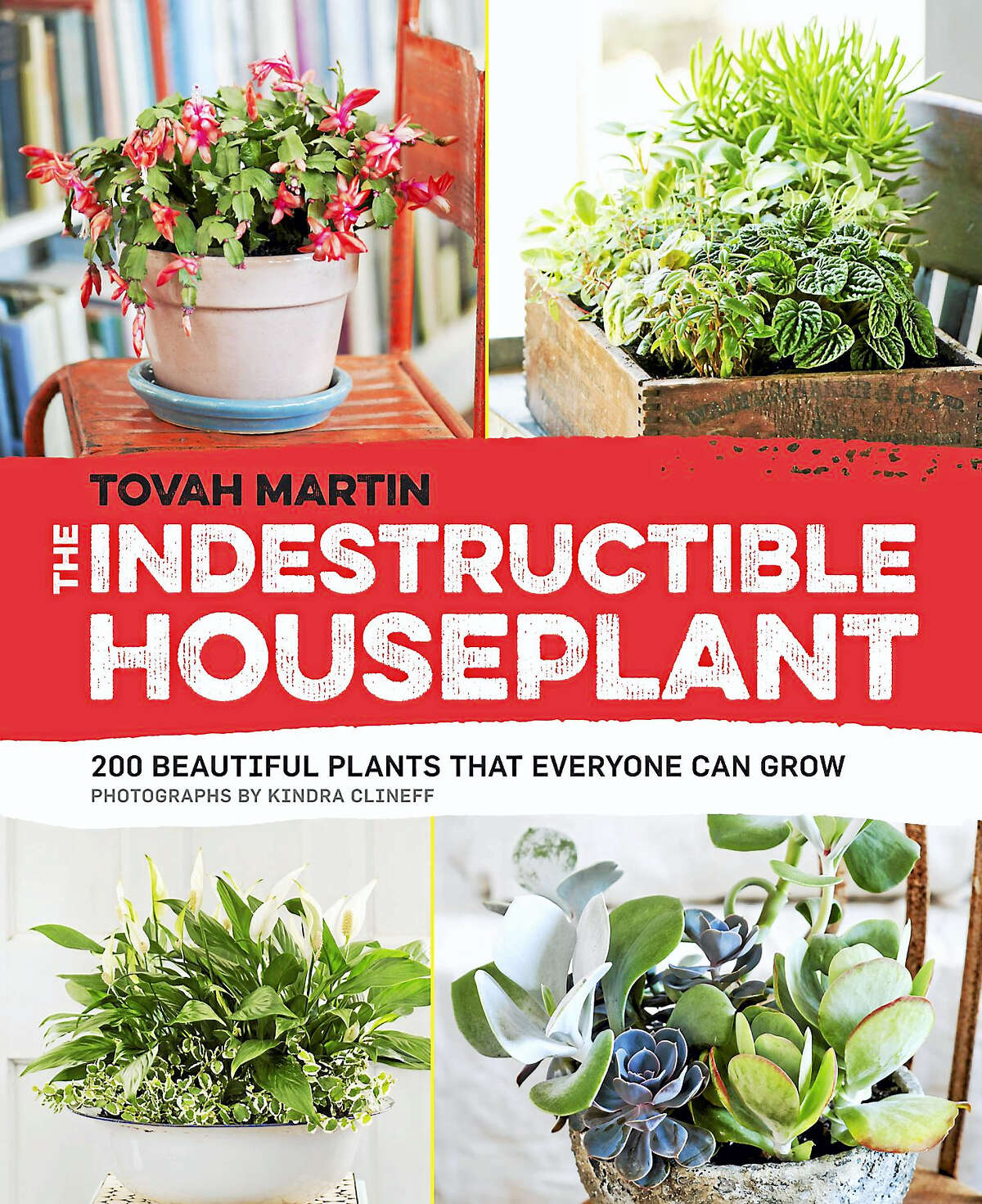 """The cover for """"The Indestructible Houseplant"""" by Tovah Martin."""