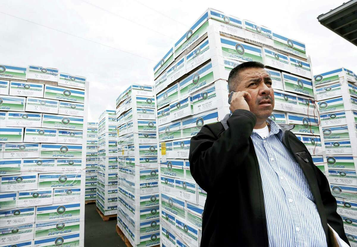 In this Nov. 5, 2014, file photo, Saul Ruiz talks on the phone at the Apple King warehouse in Gleed, Wash.