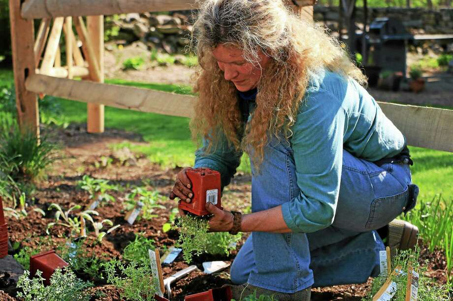 Nancy Stuart, assistant cooking school director, works on an herb garden outside of the Silo. Photo: Photo By John Fitts
