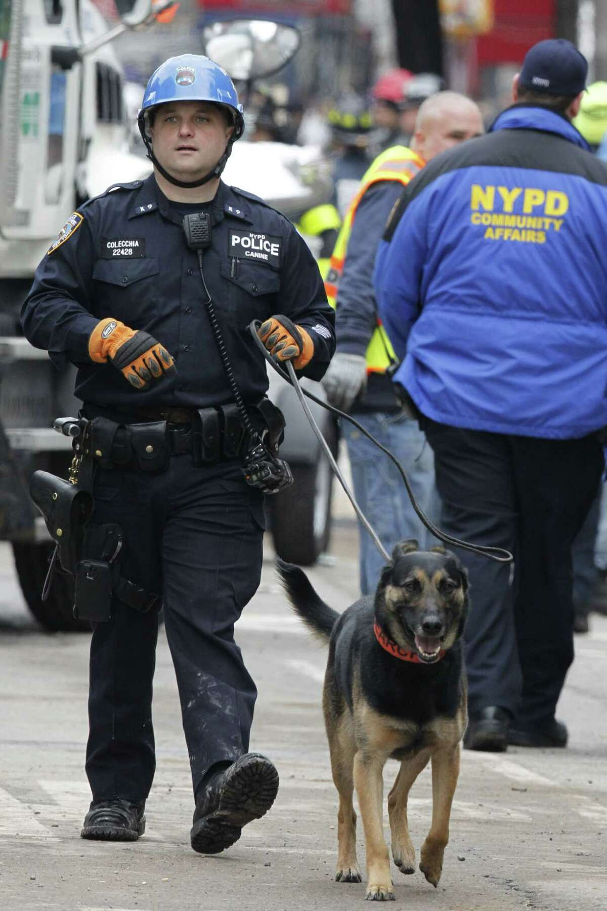 A search dog walks around the site of a building collapse in the East Village neighborhood of New York, Friday, March 27, 2015. Nineteen people were injured, four critically, after the powerful blast and fire sent flames soaring and debris flying Thursday afternoon. Preliminary evidence suggested that a gas explosion amid plumbing and gas work inside the building was to blame.