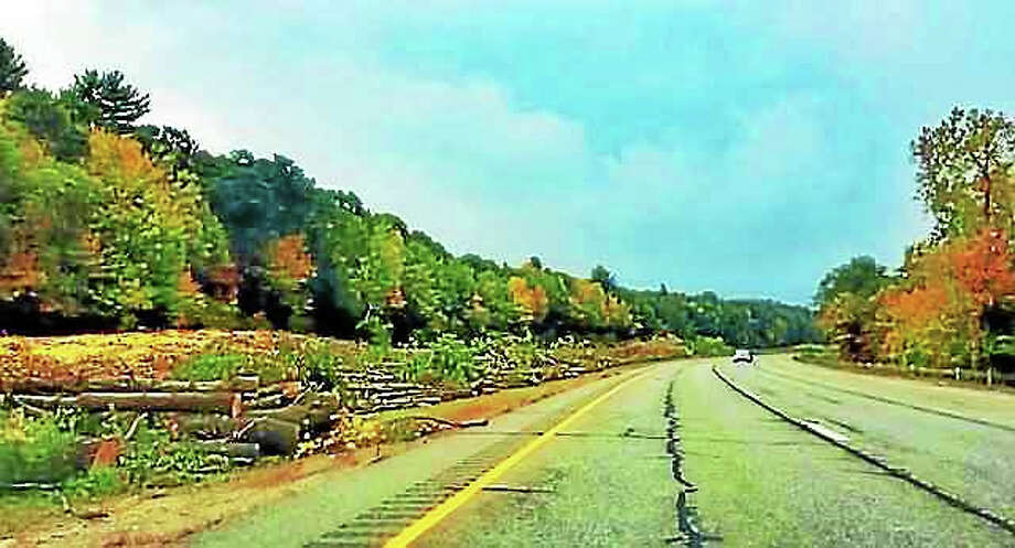 Trees are stacked in the Route 8 median between Winsted and Torrington after state Department of Transportation workers cut them down to increase safety along the highway, DOT officials said. Photo: Contributed Photo — Tim CUNNINGHAM