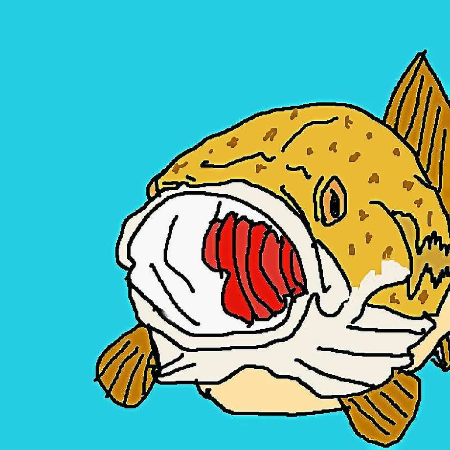 "Photo contributed by Wamogo Regional High School ""In Cod We Trust,"" a logo created by a student artist at Wamogo Regional High School, illustrates the students' efforts to find a way to prevent codfish from possible extinction. Photo: Journal Register Co."