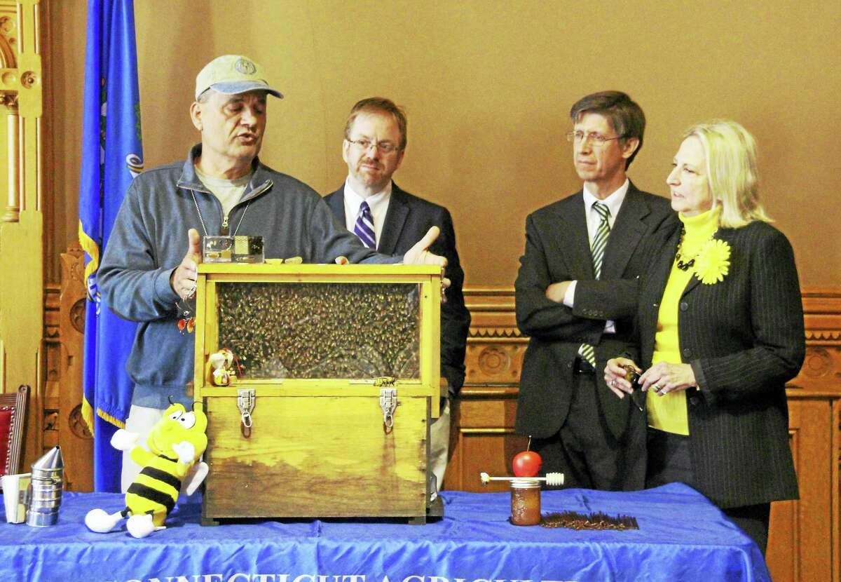 State Rep. Roberta Willis, right, looks on as state Bee Inspector Mark Creighton, left, shows off his beehive at a recent Capitol press conference. Willis joined colleagues and advocates in support of a bill that would better protect Connecticut's pollinators. There is growing concern in the state over the loss of bee colonies in the state.
