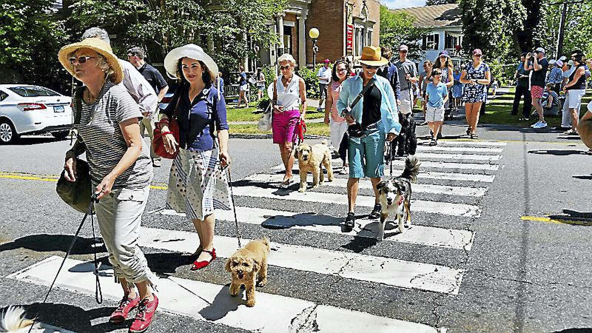 Fifty dogs, plus a cat, a rabbit, and one stuffed animal, attended the the 17th annual Litchfield Historical Society's Pet Parade and Turn-of-the-Century Fest at the Litchfield Town Green Monday afternoon. The mostly-canine contestants won ribbons while their owners and children had ice cream and played old-fashioned lawn games.