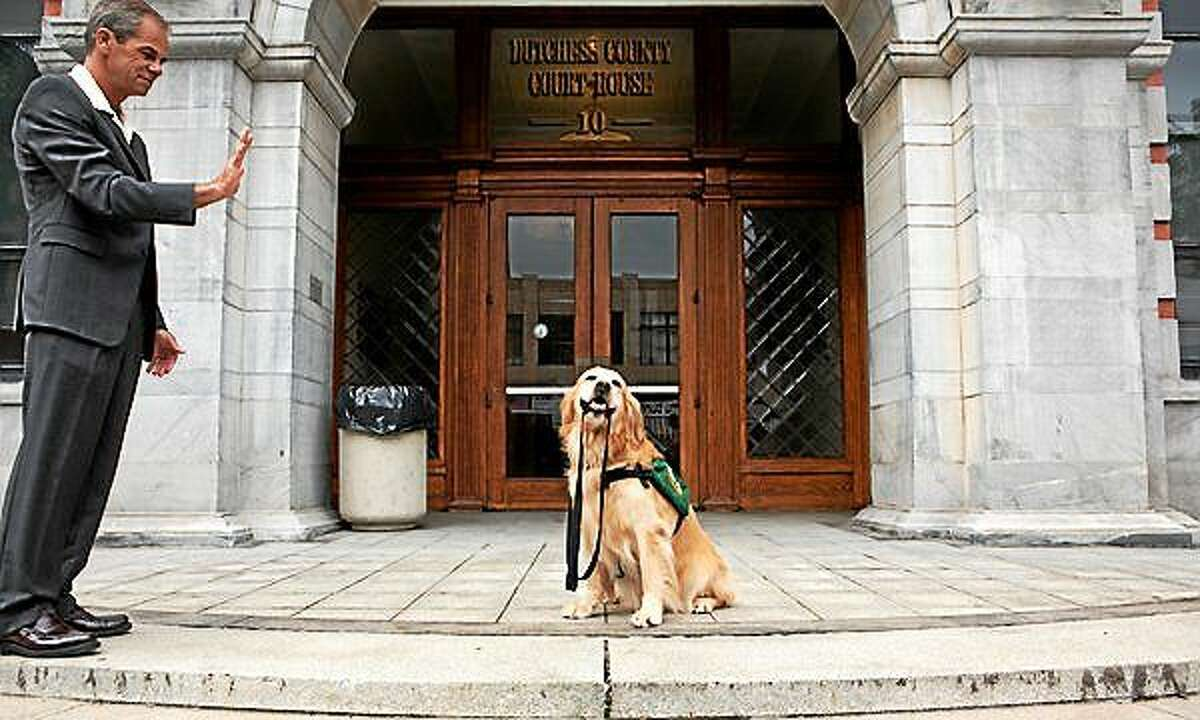 Contributed photo Rosie, on of ECAD's trained dogs, is trained to provide comfort for children inside of courtrooms.