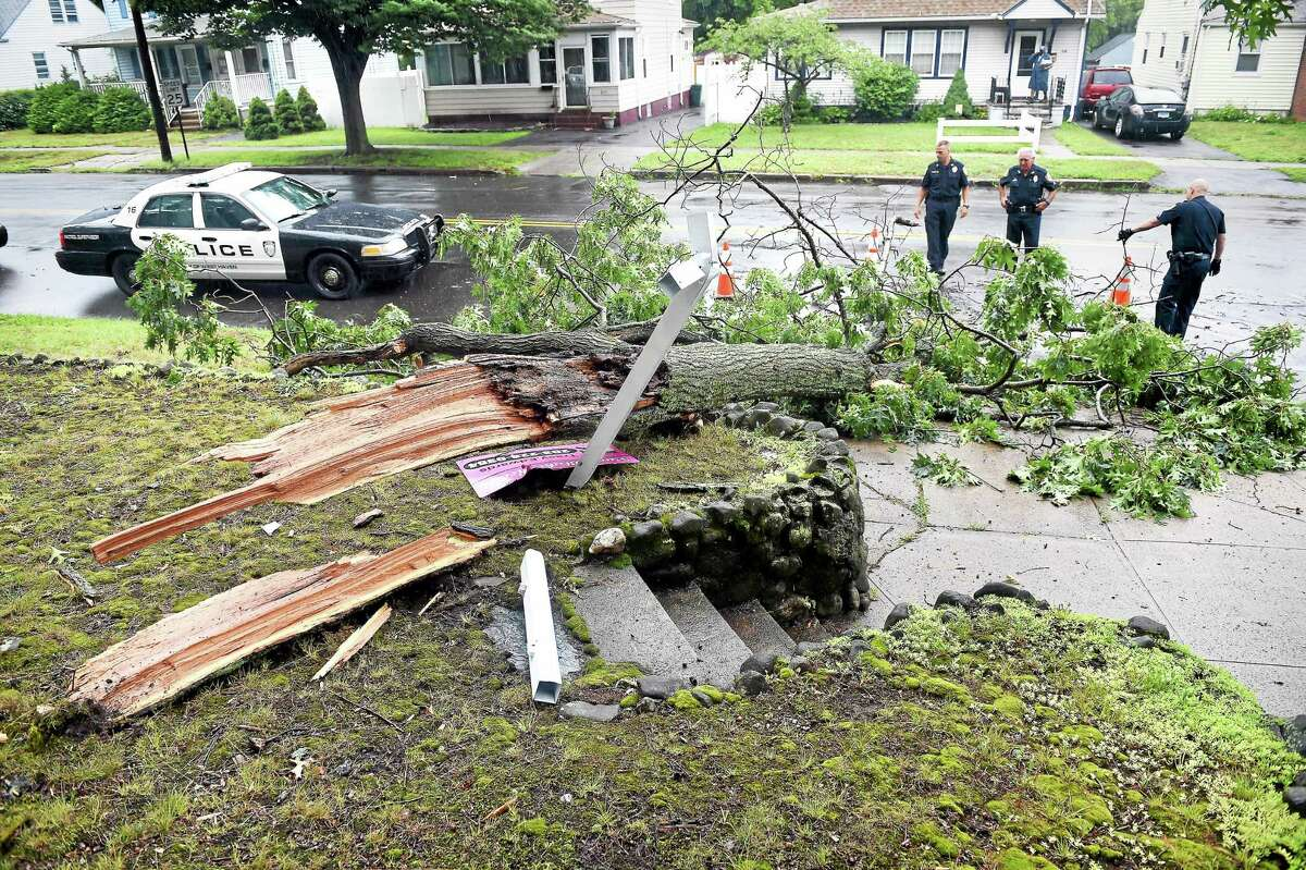 West Haven Police place cones around a downed tree at the corner of Kelsey Avenue and Church Street Tuesday.