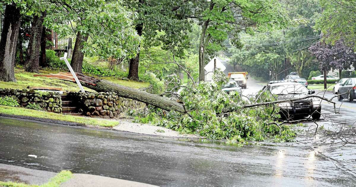 A tree fell at the corner of Kelsey Avenue and Church Street in West Haven Tuesday.