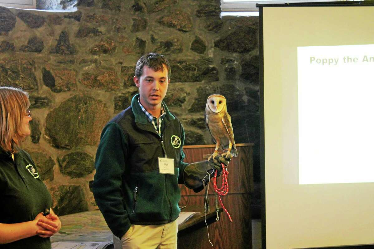 Nick Tiberio, director of Aviculture at the Livingston Ripley Waterfowl Conservancy, shows off Poppy the American Barn Owl.