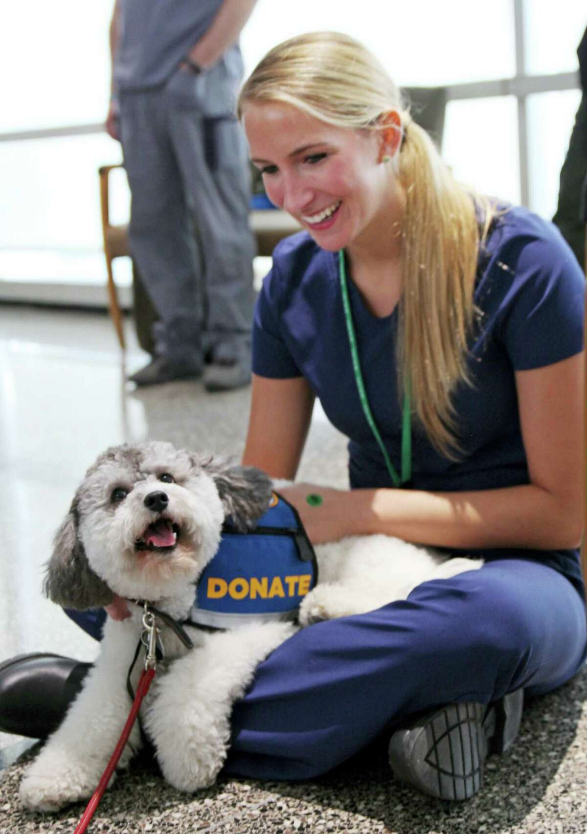 Medical assistant Loren White pets Minnie, a Labradoodle mix at Rush University Medical Center in Chicago.