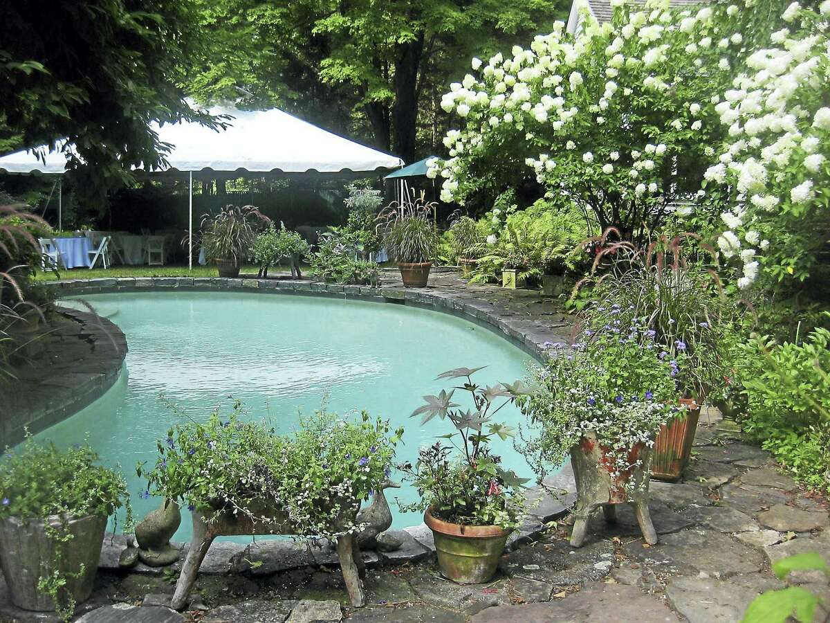 The gardens and pool at the home of Gael Hammer and Gary Goodwin.