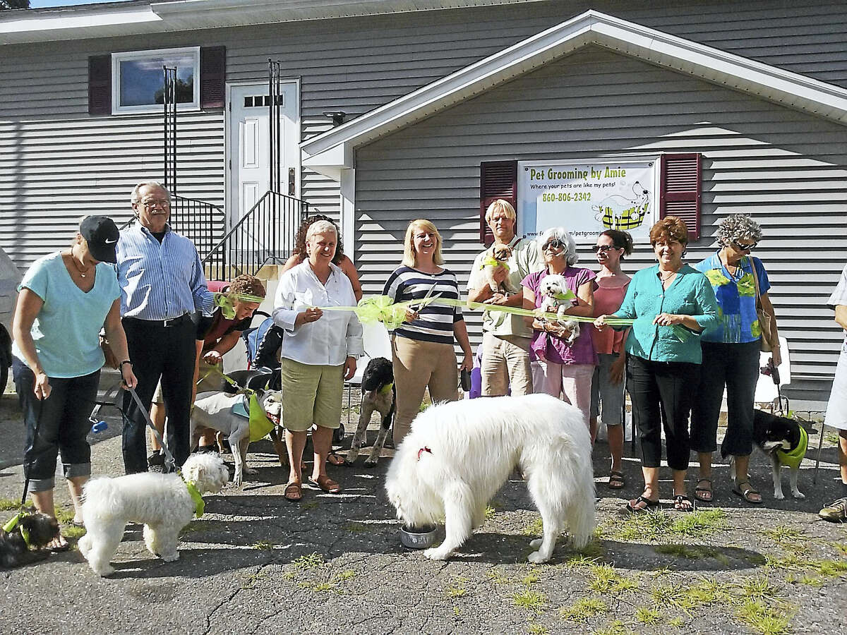 Contributed photo by Phillip AllenPet Grooming by Annie, a new pet care business opened Aug. 3 at 88 Elm Street in Winsted. Friends of Main Street members, clients, elected officials and owner Annie Patrick, center, held a ribbon cutting ceremony that afternoon. To reach the grooming salon, call 860-806-2342.