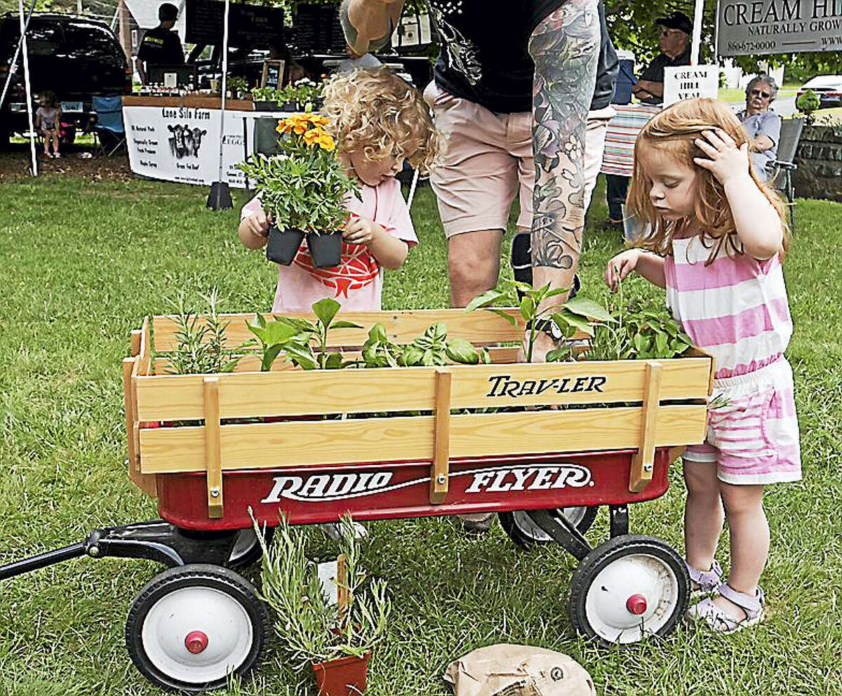 """Children of all ages are invited to have fun at the Norfolk Farmers Market Aug. 6, 10 a.m.-1 p.m. when Kids Play, a children's museum in Torrington, will be on site with interactive exhibits. New York Life representatives will also be at the market with information about their child safety program that provides parents the information and tools they need to ensure a happy and safe environment. All children accompanied by a parent or guardian will receive a complimentary identification CD complete with photograph and fingerprints that can be printed to make ID cards. Local farmers will be there with the freshest produce, meats and cheeses, breads and pastries. Browse the unique wares of local artisans and enjoy live music. Town Hall lawn, 19 Maple Ave., Norfolk, Conn., one block north of Route 44; just follow the signs. Free parking. Rain or shine. See our Facebook page or visit www.norfolkfarmersmarket.org for details. In addition to fun at the market, there are activities for children scheduled throughout the weekend as part of """"Weekend in Norfolk"""". Check their website for a complete list of events and times, http://weekendinnorfolk.org/kids/."""