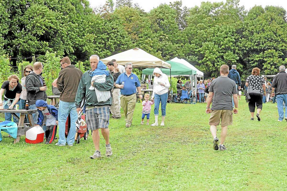 Attendees braved the rain at the annual Haight-Brown Vineyard harvest festival in Litchfield on Saturday.