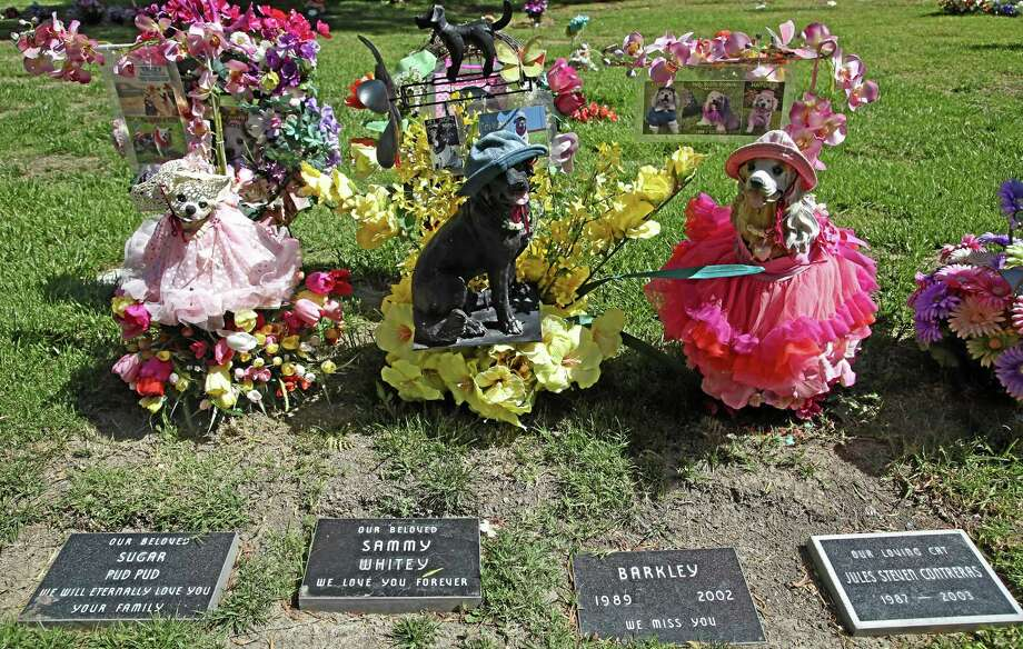 Beloved family pets memorialized with statues at the Los Angeles Pet Cemetery in Calabasas, California. Photo: Nick Ut — The Associated Press  / AP