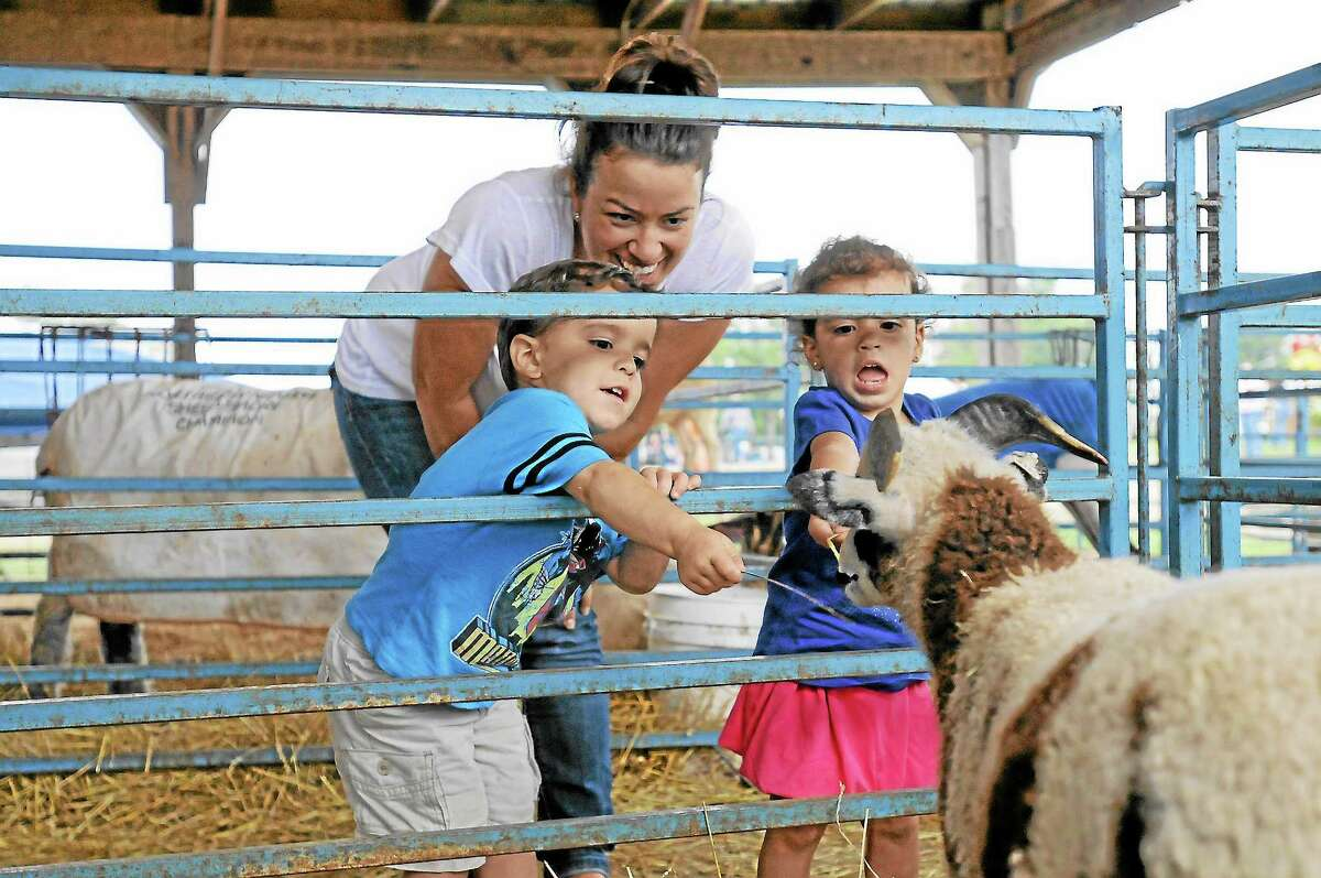 Twins Tristan and Zoe Tivu, 2, and their mother, Angela, try to feed straw to a goat at the Goshen Fair on Saturday.