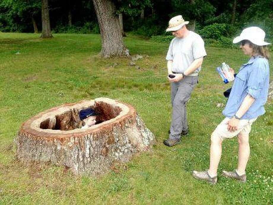 Laurel Stewart, 7, plays in the hollow stump of a former witness tree on the Gettysburg battlefield Friday as her parents, John and Maryann Stewart, look on. John Stewart, of Long Island, N.Y., is a deputy chief ranger at Fire Island National Seashore.