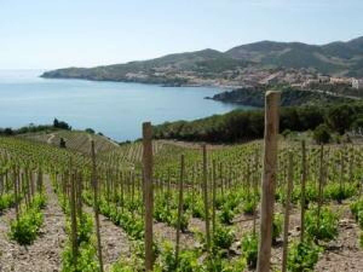 Some of the vineyards in Banyuls, in southern France, overlook the Mediterranean. Photo courtesy Steven Jankowski