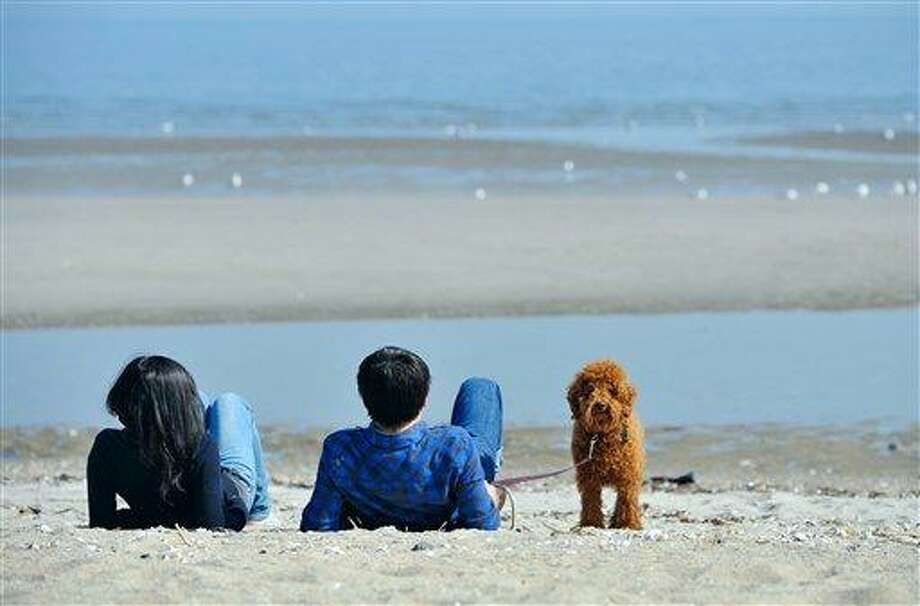 Students Dan Shao, left, and Jianbo Yang of China enjoy the warm weather with their poodle Mr. Bean on the beach in Bridgeport, Conn., Monday, March 19, 2012. (AP Photo/Jessica Hill) Photo: ASSOCIATED PRESS / AP2012