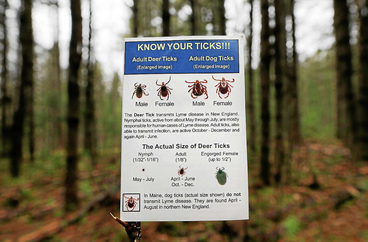 In this photo made Friday, May 9, 2014, an informational card about ticks distributed by the Maine Medical Center Research Institute is seen in the woods in Freeport, Maine.