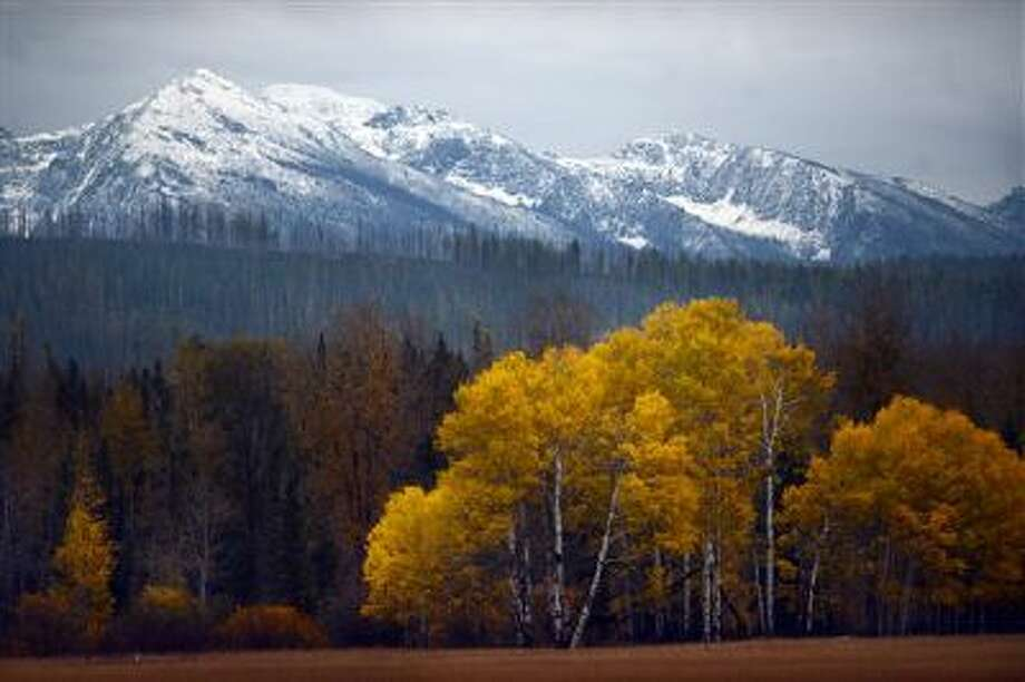 Fall color against the backdrop of the mountains in Glacier National Park is seen from the North Fork Road south of Polebridge, Mont., on Oct. 12. Photo: AP / Daily Inter Lake