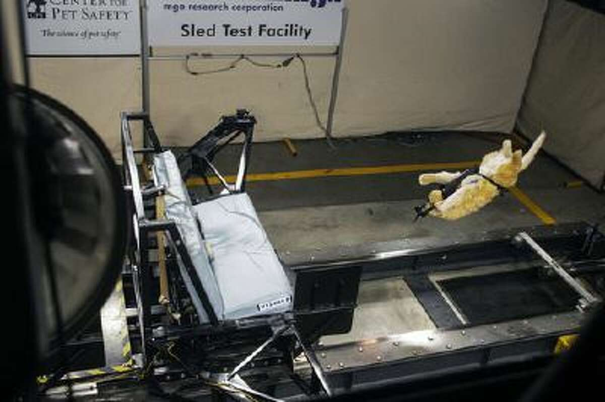 This June 2013 image provided by Subaru shows a test dog's crash test. Subaru and the Center for Pet Safety in Manassas, Virginia. The Center conducted a collaborative crash test study to test the effectiveness of popular pet harnesses. All the dummy dogs used to test dog restraint harnesses for the Center for Pet Safety make up a team of what is believed to be the nation's first instrumented, weighted and correct canine prototypes.