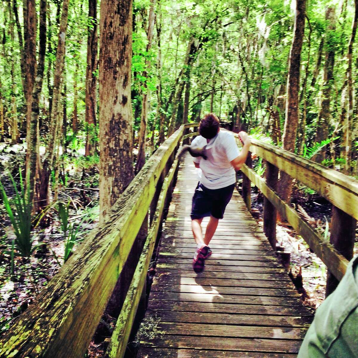 A squirrel clings to the back of Brian Genest at John Chestnut Park near Tampa, Florida.