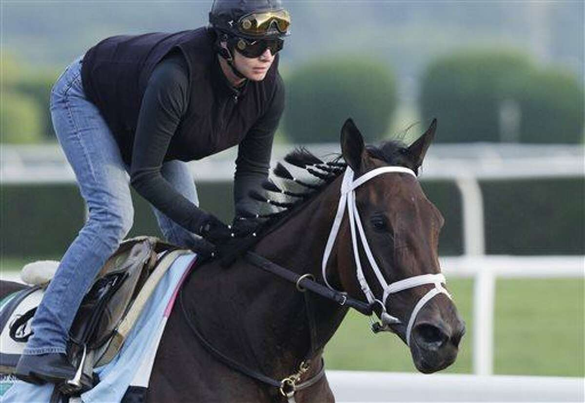 Unlimited Budget gallops on the track at Belmont Park during a morning workout Thursday, June 6, 2013 in Elmont, N.Y. The filly is entered in Saturday's Belmont Stakes horse race. (AP Photo/Mark Lennihan)