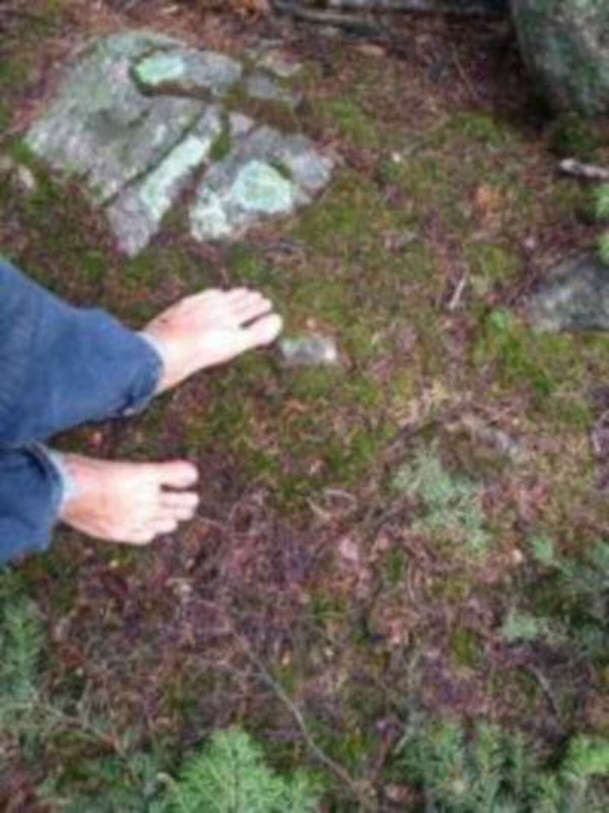 Do these feet look stressed? Staff writer Douglas Brown could have walked all day on moss, granite and pine needles. (Douglas Brown/The Denver Post)