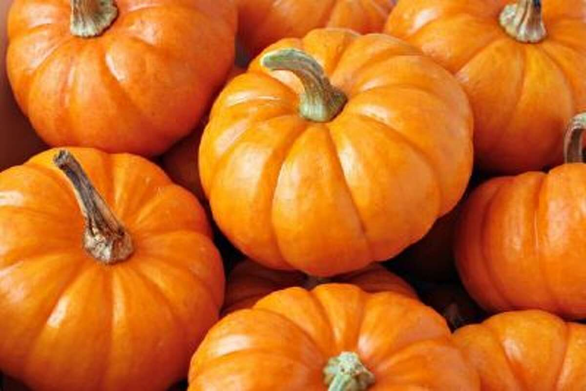 Flying through JFK this month? Pick up a pumpkin at the pop-up farmer's market at Terminal 5.