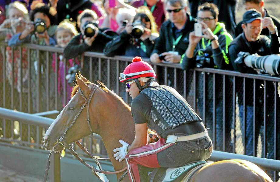 Exercise rider Willie Delgado pauses with California Chrome as they walk out to the track for a workout Friday at Belmont Park in New York. The Kentucky Derby and Preakness Stakes winner will attempt to become the first Triple Crown winner since Affirmed in 1978 when he races in the 146th running of the Belmont Stakes on Saturday. Photo: Peter Morgan — The Associated Press  / AP