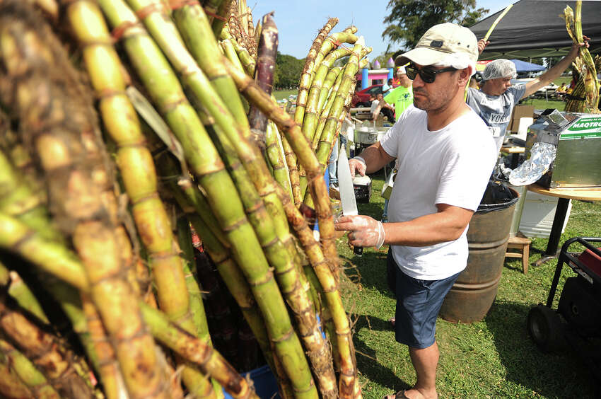 Elton Pereira, of New Jersey, cuts sugar cane for traditional drinks at the 5th Brazilian Day Festival at Seaside Park in Bridgeport, Conn. on Sunday, August 27, 2017. The event featured live bands, Zumba, and a variety of traditional fodd and drink.