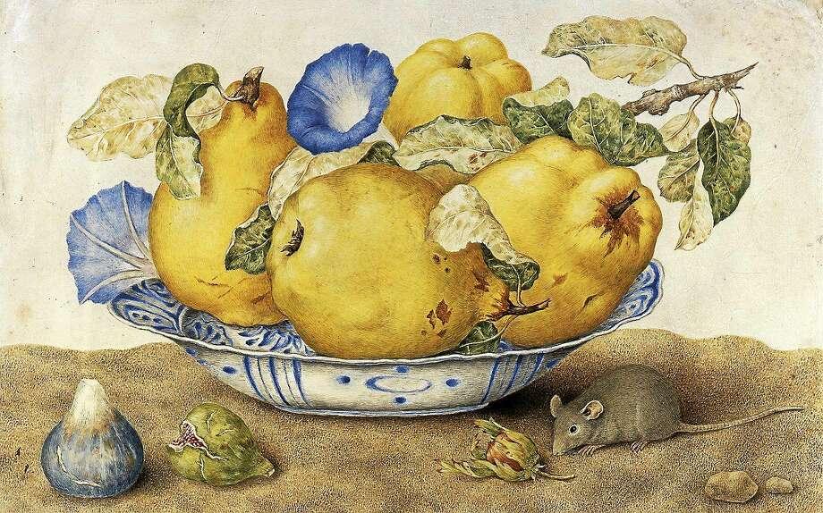 Giovanna Garzoni, Ceramic Bowl with Quinces, Morning Glories, Figs, Hazelnuts and a Mouse, tempera on parchment. Collection of Silvano Lodi, Campione D'Italia. Photo: Courtesy Of The Galleria Silvano Lodi & Due Milano