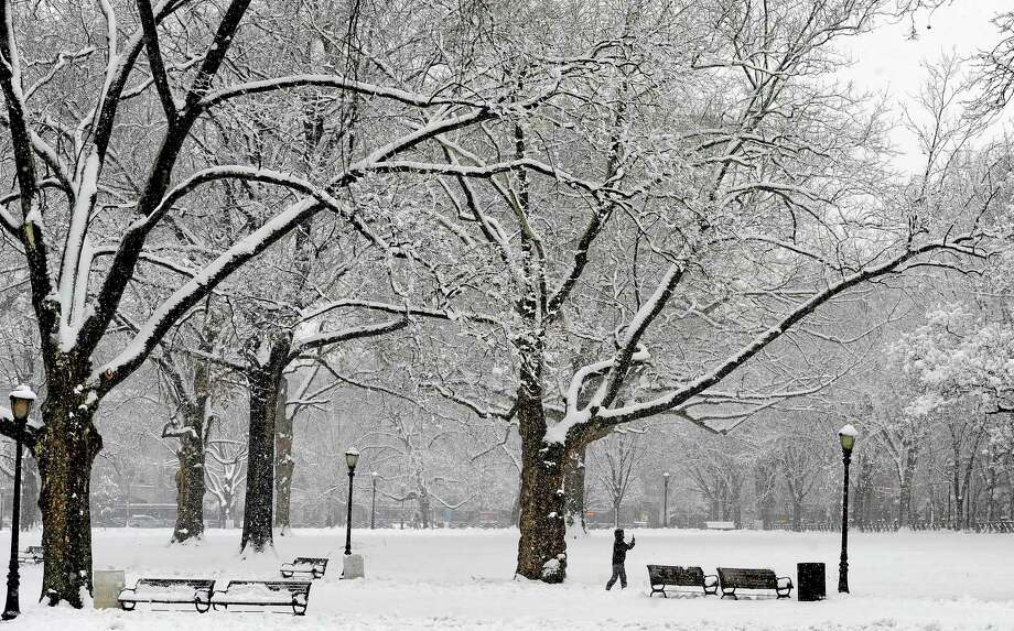 In this Feb. 3, 2014 file photo, a woman takes photos of the snow on the New Haven Green. Photo: Associated Press  / FR125654 AP