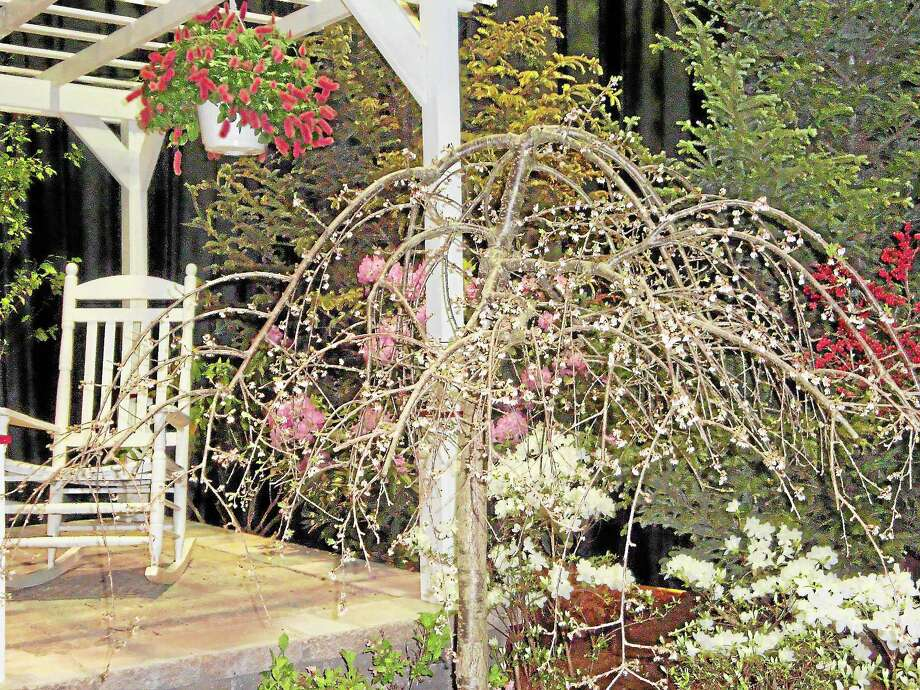 Submitted photo CT Flower and Garden Show Exquisite exhibits like this one will be found at the upcoming garden and flower show in Hartford . Photo: Journal Register Co.