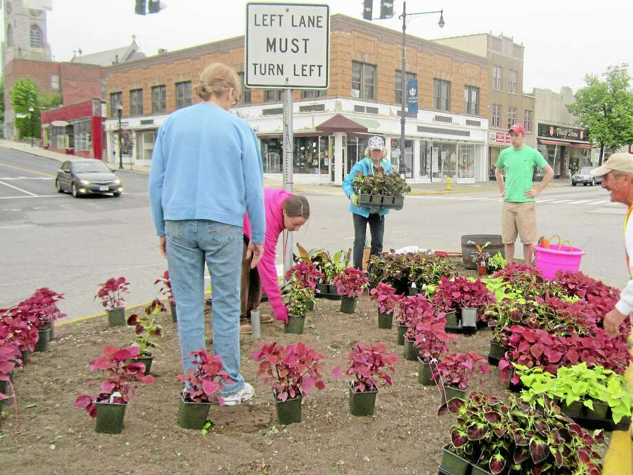 Mary Winslow Elaine Gross, Jen Plasky, Mary Winslow, Tim Waldron, Peter Mahler and Steve Gross help to plant flowers at one of the medians at the heart of downtown Torrington in May 2013. The project, which took place on May 19, involved the Torrington Beautification Committee, Seasons of Growth, Jesperson Landscaping and other volunteers, and was meant to build on the lessons learned from last year's redesign. Photo: Register Citizen File Photo