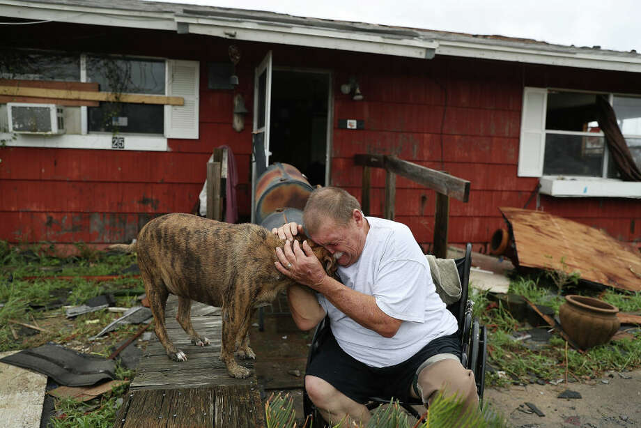For the second time since Tropical Storm Harvey made landfall, a dog named Otis has found its way into the internet's heart. Photo: Joe Raedle/Getty Images