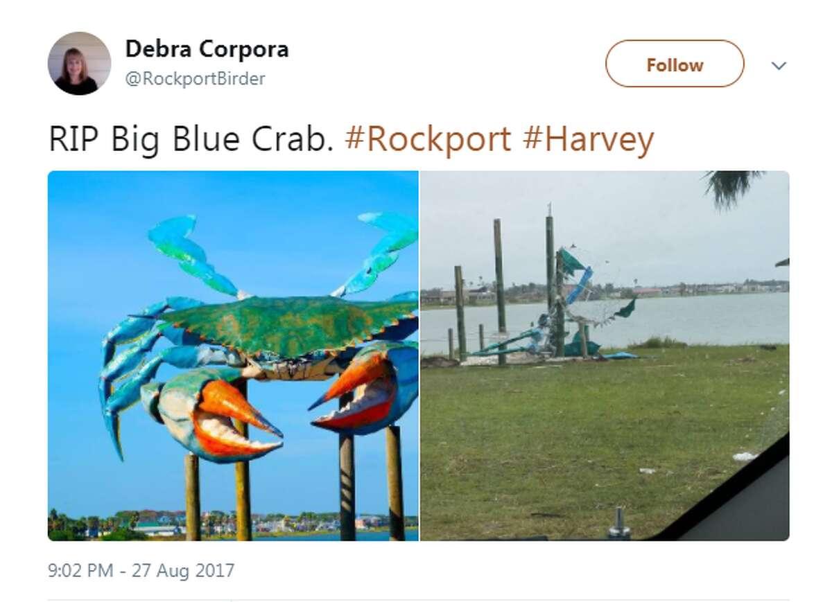 Social media reactions from the Coastal Bend on Hurricane Harvey.