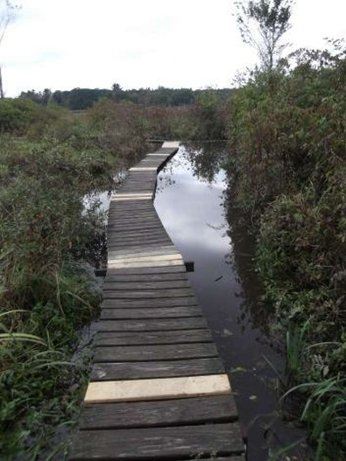 By KAITLYN YEAGER White Memorial Foundation's boardwalk, which leads hikers through its popular Little Pond area, is partially repaired.