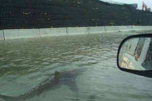 An Ireland-based blogger shared this viral, but long-debunked image claiming to show a shark on a Houston highway.
