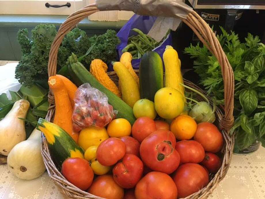 Sherman community gardeners have donated farmers market vegetables to the Sherman Senior Center. Photo: Courtesy Of Suzette Berger / The News-Times Contributed