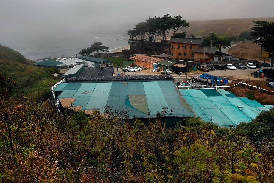Overview of American Abalone Farms in Davenport (Santa Cruz County). Photo: Michael Macor, The Chronicle