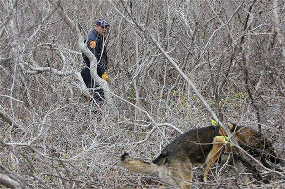 New york police resume search for bodies near beach sample research paper outline mla