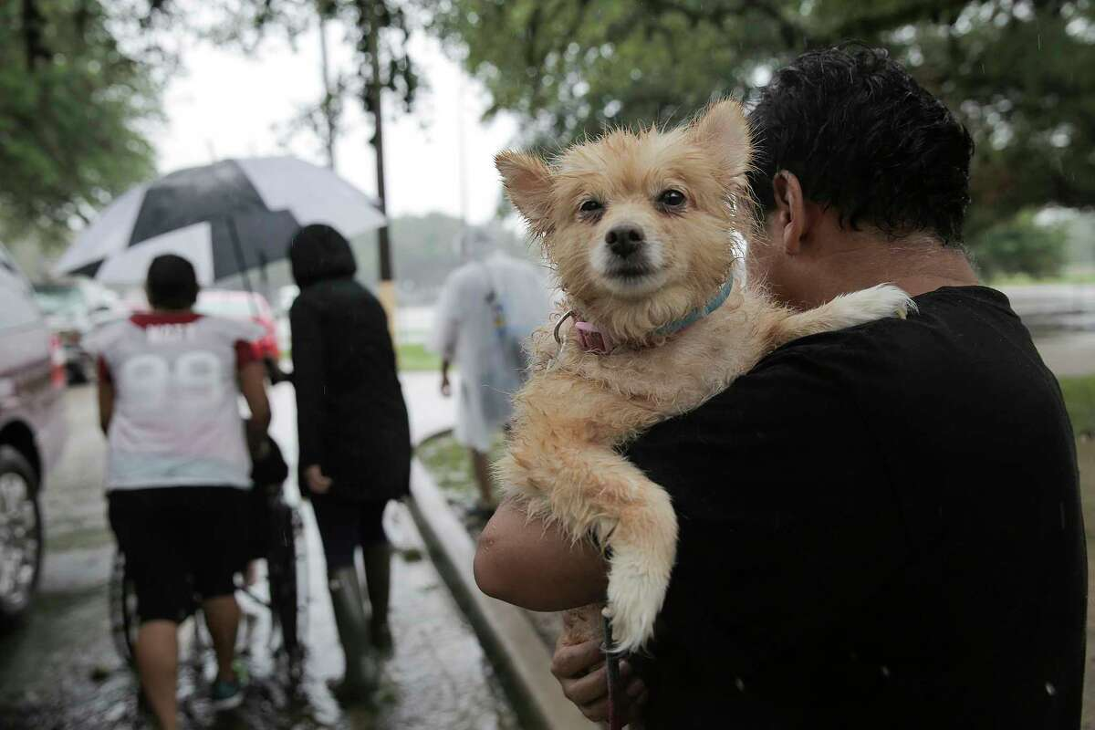 A man takes his dog as he is taken to safety in Houston as Tropical Storm Harvey inches its way through the area on Monday, Aug. 28, 2017.
