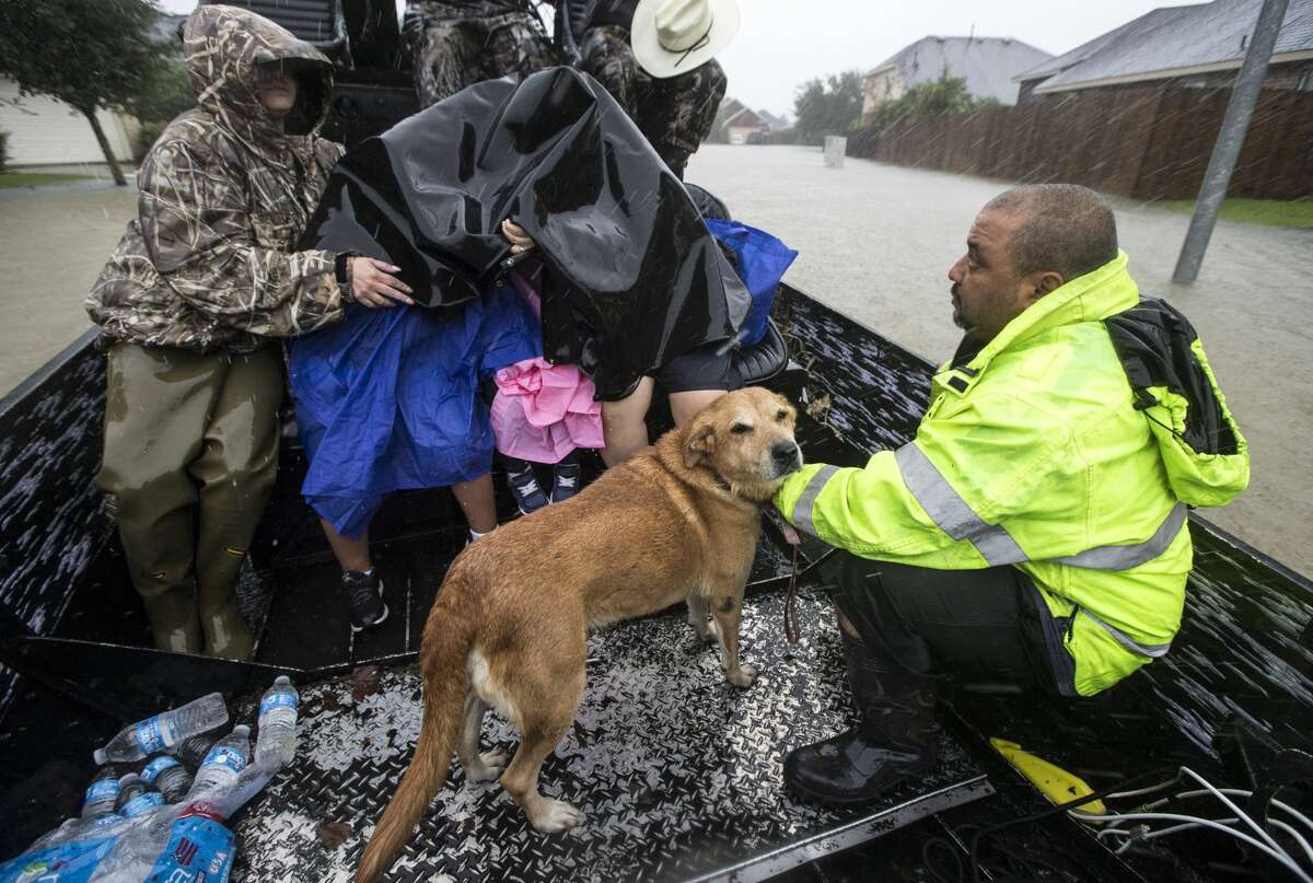 Richard Velasco holds his dog as he and his family are evacuated from the Grand Mission subdivision, as the water rises from heavy rains from Tropical Storm Harvey, on Monday, Aug. 28, 2017, unincorporated Fort Bend County, Texas. ( Brett Coomer / Houston Chronicle )