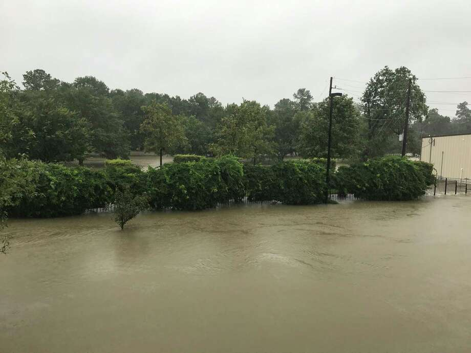 The view from our apartment of Cypress Creek overflowing into our apartment complex. Photo: Alyson Ward