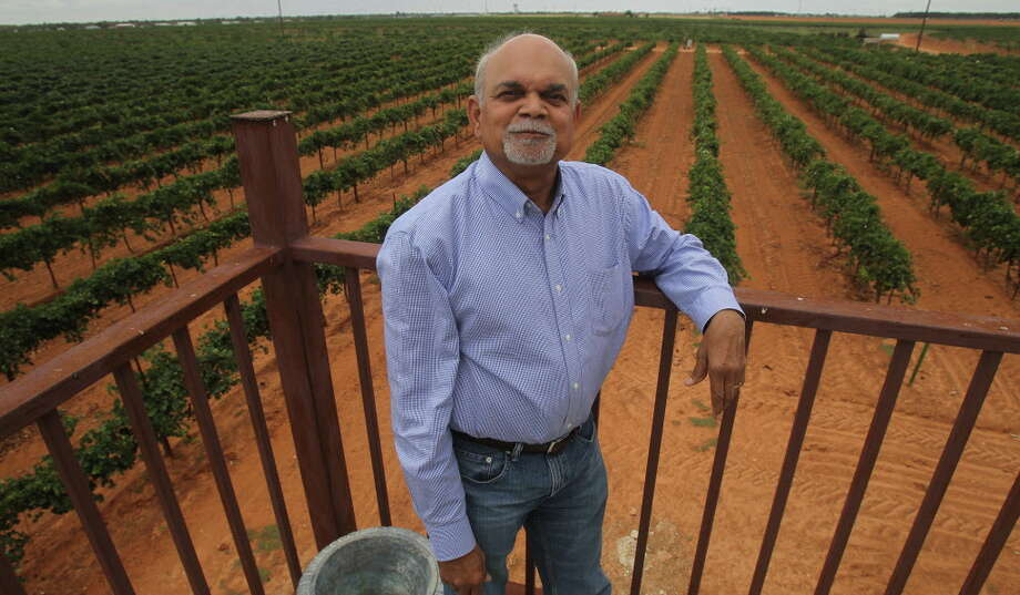Vijay Reddy owns Reddy Vineyards in Terry County, Texas. He reported to Ron Saikowski that harvest wsa going well and on schedule and they've enjoyed superior weather so far. Photo: JOHN DAVENPORT, STAFF / ©San Antonio Express-News/Photo may be sold to the public
