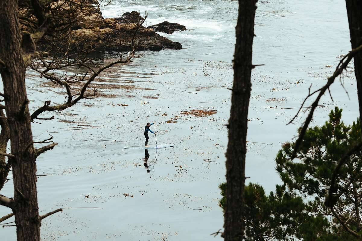 Standup paddle boarder paddles out from Bluefish Cove in the Point Lobos State Natural Reserve in Carmel, Calif. Thursday, August 24, 2017.