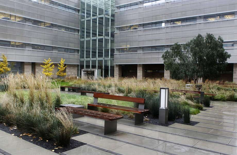 Wood benches and native grasses fill a plaza in front of the cardiovascular research center at the UCSF Mission Bay campus in San Francisco, Calif. on Friday, Dec. 21, 2012. Photo: Paul Chinn, The Chronicle