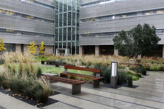 Wood benches and native grasses fill a plaza in front of the cardiovascular research center at the UCSF Mission Bay campus in San Francisco, Calif. on Friday, Dec. 21, 2012.